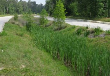 Incentives for Natural Drainage Systems in Houston Area Development Projects?