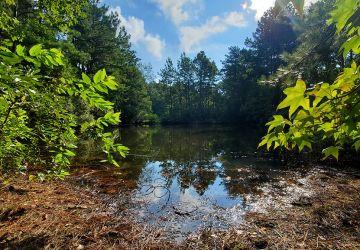 Key Changes to Federal Wetlands Regulation