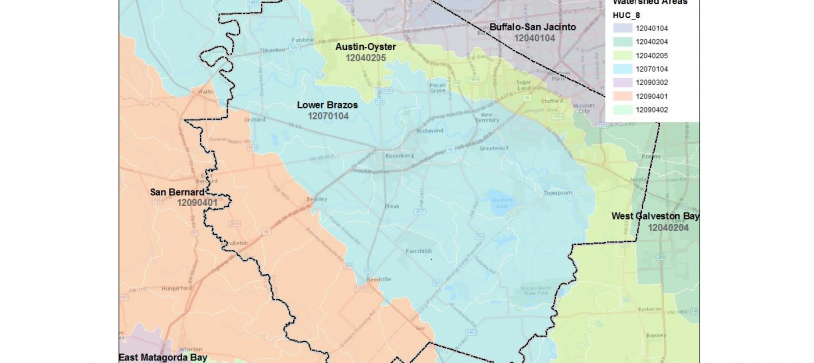 Wetlands and Stream Mitigation Bank Feasibility Study (Fort Bend County)